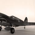 リバプリック キティホーク Mk.1